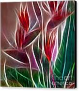 Bird Of Paradise Fractal Panel 2 Canvas Print by Peter Piatt