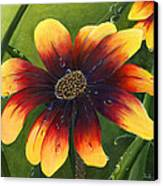 Blanket Flower Canvas Print by Trister Hosang