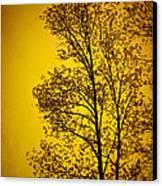 Blazing Sunset Canvas Print by Cheryl Davis