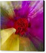 Bloom Zoom2 Canvas Print by Charles Warren