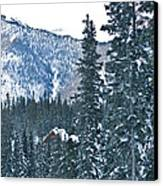 Blue Green Mountain Canvas Print by Lisa  Spencer
