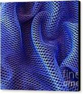 Blue Net Background Canvas Print by Carlos Caetano