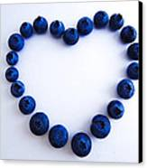 Blueberry Heart Canvas Print by Julia Wilcox