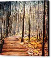 Boardwalk Canvas Print by Jai Johnson