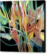 Bouquet Canvas Print by Ann Powell