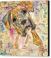 Boxer Babe Canvas Print by Marilyn Sholin