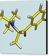 Bupropion Drug Molecule Canvas Print by Dr Tim Evans