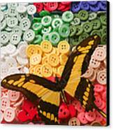 Butterfly And Buttons Canvas Print by Garry Gay
