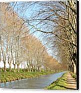Canal With Tree Canvas Print by Teocaramel