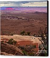 Canyonland Overlook Canvas Print by Robert Bales