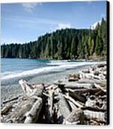 China Beach Vancouver Island Juan De Fuca Provincial Park Canvas Print by Andy Smy