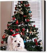 Christmas Card Dog Canvas Print by Vijay Sharon Govender
