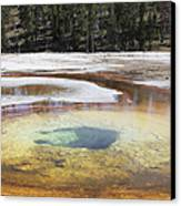 Chromatic Pool Hot Spring, Upper Geyser Canvas Print by Richard Roscoe