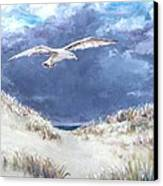 Cloudy With A Chance Of Seagulls Canvas Print by Jack Skinner