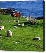 Co Cork, Beara Peninsula Canvas Print by The Irish Image Collection