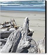 Coastal Driftwood Art Prints Blue Waves Ocean Canvas Print by Baslee Troutman