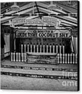 Coconut Shy 2 Canvas Print by Adrian Evans