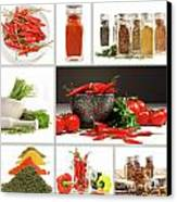Collage Of Different Colorful Spices For Seasoning Canvas Print by Sandra Cunningham