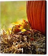 Colorful Autumn Canvas Print by Nava Thompson