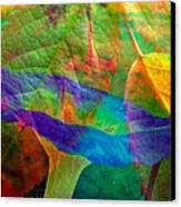Colors Of Autumn Canvas Print by Shirley Sirois