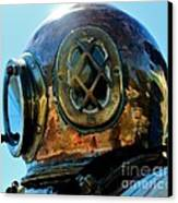 Copper Head Canvas Print by Rene Triay Photography