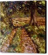 Country Lane Canvas Print by John  Nolan