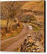 Country Lane Yorkshire Dales Canvas Print by Trevor Kersley