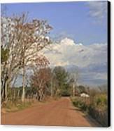 Country Road Canvas Print by Jan Amiss Photography