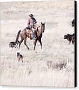 Cowboy Canvas Print by Cindy Singleton