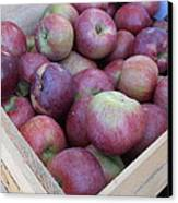 Crate Of Apples Canvas Print by Kimberly Perry