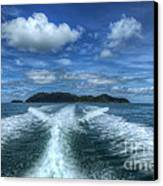 Cruising Canvas Print by Adrian Evans