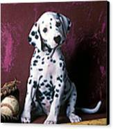 Dalmatian Puppy With Baseball Canvas Print by Garry Gay