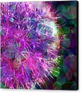 Dandelion Party Canvas Print by Judi Bagwell