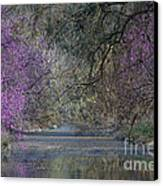 Davis Arboretum Creek Canvas Print by Diego Re