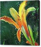 Day Lily Number Two Canvas Print by Gary Deslauriers