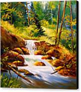 Deep Woods Beauty Canvas Print by Robert Carver