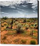 Desert Of New Mexico Canvas Print by Thomas  MacPherson Jr