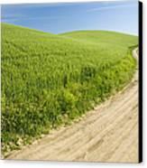 Dirt Road Through Field, Palouse, Washington Canvas Print by Paul Edmondson