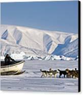 Dog Sled, Qaanaaq, Greenland Canvas Print by Louise Murray