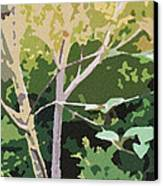 Dogwood I Canvas Print by Katharine Birkett