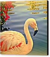 Dreamy Flamingo Canvas Print by Kevin Moore