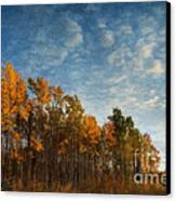 Dressed In Autumn Colors Canvas Print by Priska Wettstein