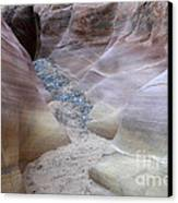 Dry Creek Bed 3 Canvas Print by Bob Christopher