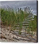 Dunes Canvas Print by Rick Berk