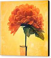Estillo - 01i2t03 Canvas Print by Variance Collections