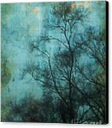 Evening Sky Canvas Print by Judi Bagwell