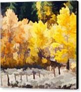 Fall In The Sierra Canvas Print by Carol Leigh