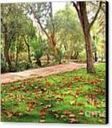 Fall Park Canvas Print by Carlos Caetano