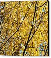 Fall Trees Art Prints Yellow Autumn Leaves Canvas Print by Baslee Troutman