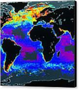 False-col Satellite Image Of World's Oceans Canvas Print by Dr Gene Feldman, Nasa Gsfc